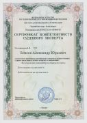 Сертификат_Исследование записей бухгалтерского учета_2018-2021