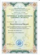 Сертификат_Исследование записей бухучета_2021-2024