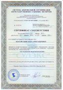 """Сертификат """"Исследование видеоизображений"""" 2013-2016гг."""